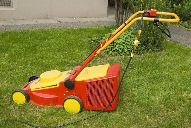 Elektro- oder Akku-Rasenmäher?