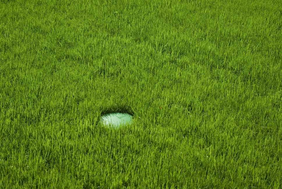 Versenkregner im Rasen