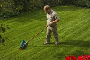 Rasen düngen mit dem Düngestreuer