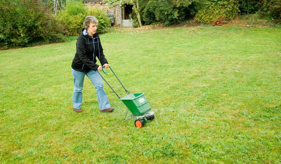 Rasen düngen - Die Grundlagen
