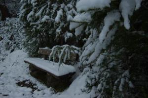 Winterlicher-Garten