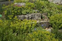 verspielte Gartentreppe